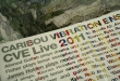 http://www.juno.co.uk/products/caribou-vibration-cve-live-2011-1-per/560676-01/