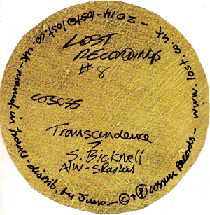 Steve Bicknell - Lost Recordings 8: Transcendence