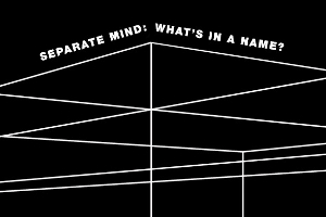 Separate Mind: What's In A Name?