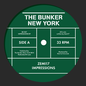 Zemi17 - Impressions