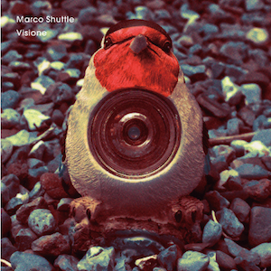 Marco Shuttle - Visione
