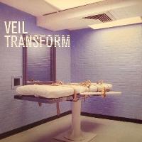 Veil – Transform (Light & Dark)