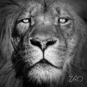 Ziro - Lionheart