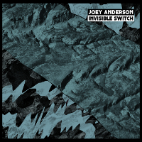 Joey Anderson – Invisible Switch (Dekmantel)